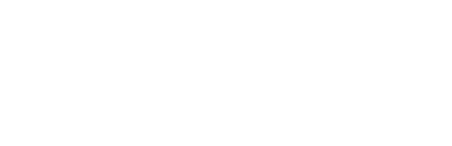 Webpen_logo_Weiss